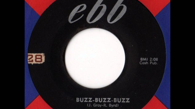 Hollywood Flames: Buzz Buzz Buzz